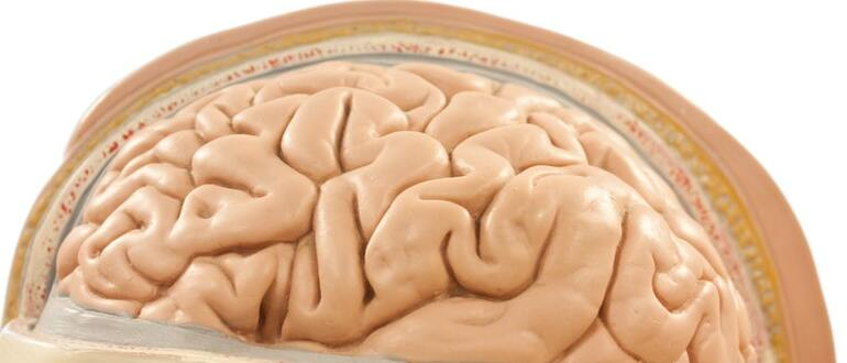 Декомпрессивная и костно-пластическая трепанация черепа