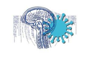 Коронавирус и нервная система